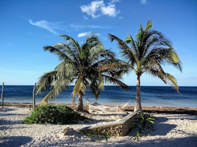 Coconut Cottage/ocean view