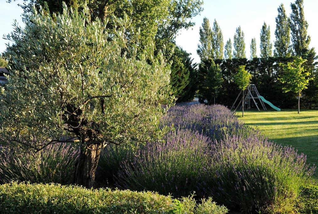 Le jardin et les jeux d'enfants