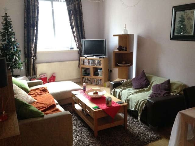 Lovely double room in City Centre - Glasgow - Appartement