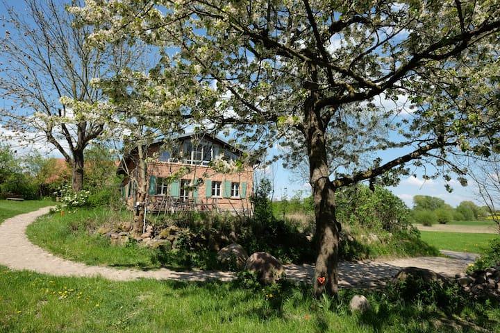 Landhaus Fredenwalde - mit Flügel