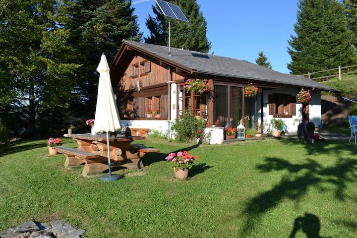 Chalet entre montagnes et lac, calme absolu - Saint-Légier-La Chiésaz - Chalet