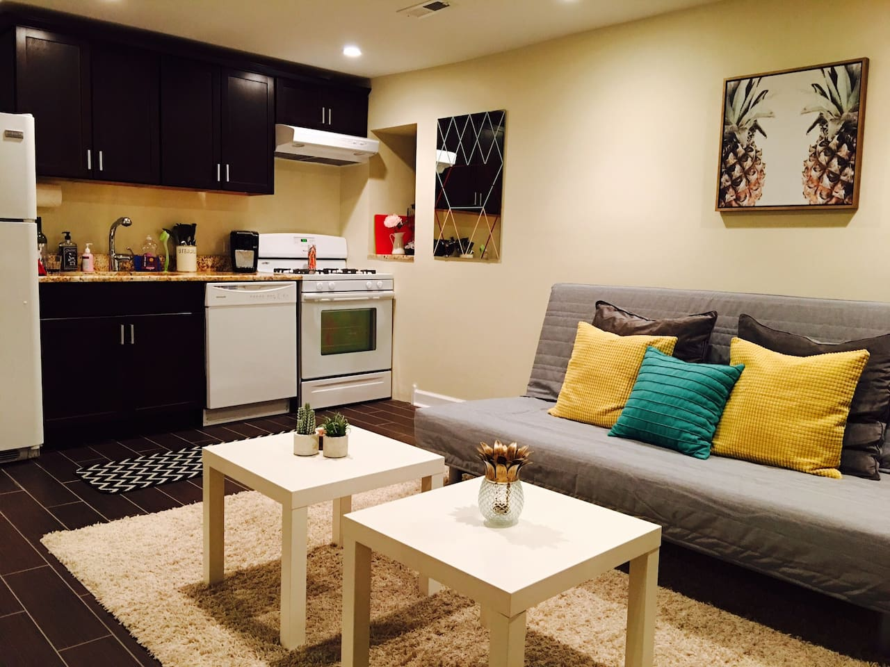 Newly renovated garden apartment in Pilsen. Brand new appliances and furniture!