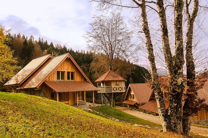 DOLOMITI VILLAGE - Povolaro - House