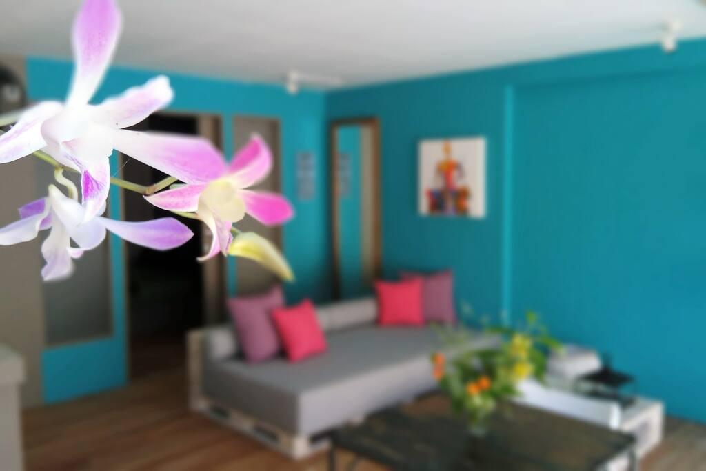 Orchids,