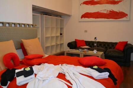 Ruime kamer(s) in modern huis. (zonder ontbijt) - Kortrijk - Villa