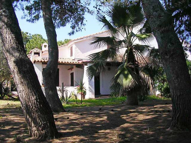 Villa Raffaele in riva al mare - Nora - Villa