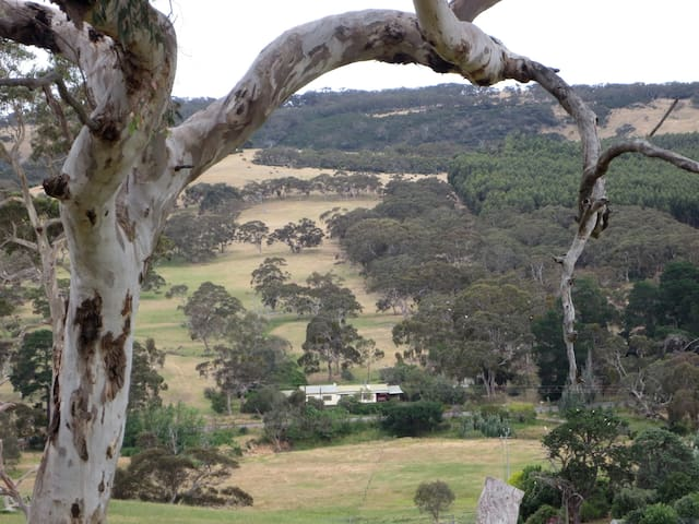 Kookaburra Dreaming - dog friendly accommodation