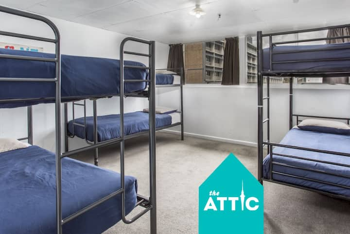 Private 6-Bed Dorm GREAT for Friends & Groups!