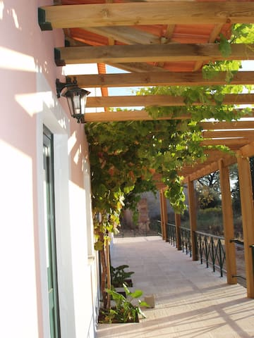 Casa inserida numa quinta. - Torres Novas