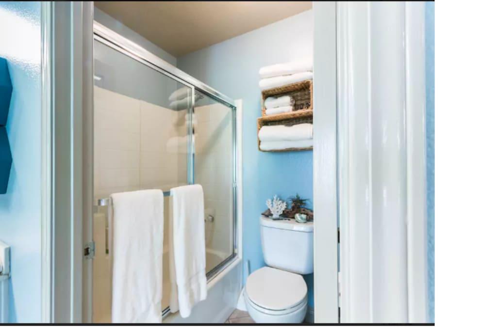 Upstairs bathroom shower area
