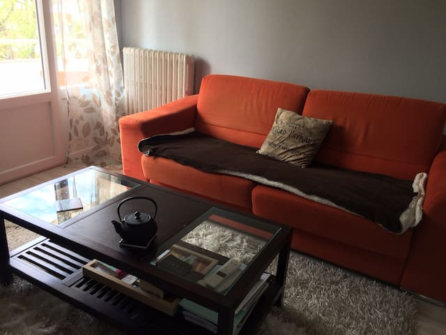 Nice T2 / 1 bedroom walking distance from the lake