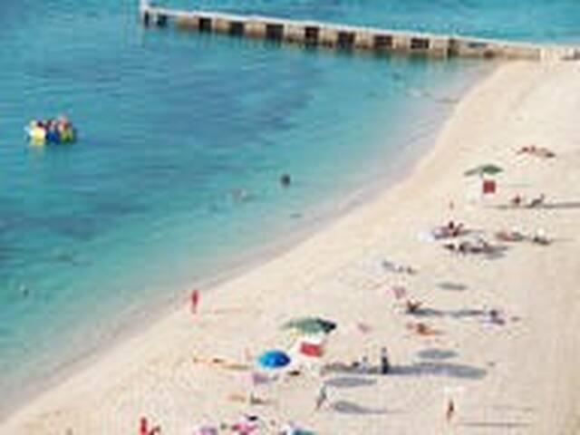 BeachFront Paradise 1 Bedroom Apt Montego Bay Club