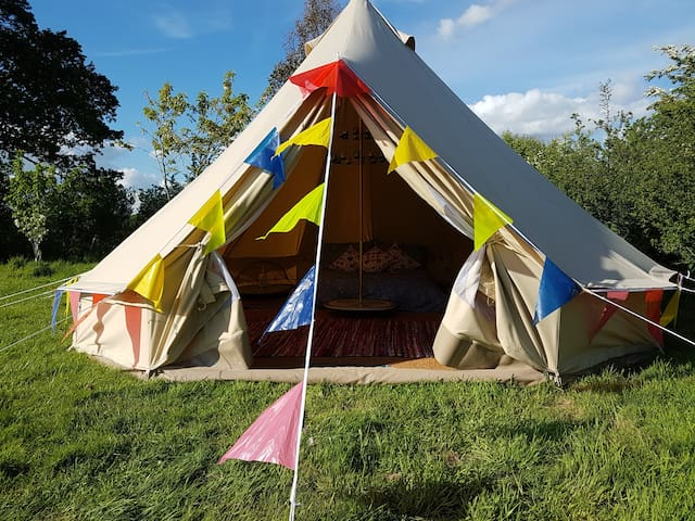 Bella our bell tent