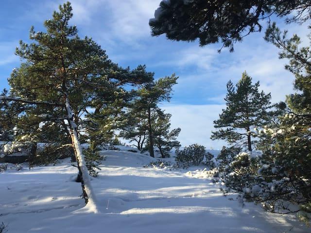 Talvimaisema Villa Högbon huikaisevan kauniilta kallioilta.