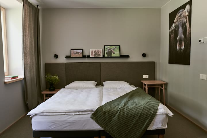 BARONO VILA - double room with forest view