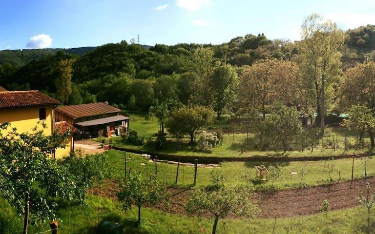 Fattoria Bio Mulino La Vallina - Quero - Flat