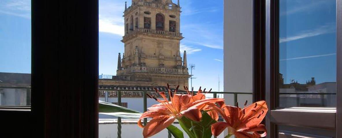 Apartamento La Hoguera. Centro histórico y vistas. - Córdoba - Apartment