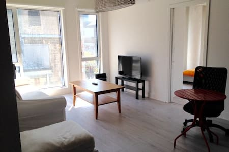 Beautiful appartement in dowtown - Montréal - Apartment