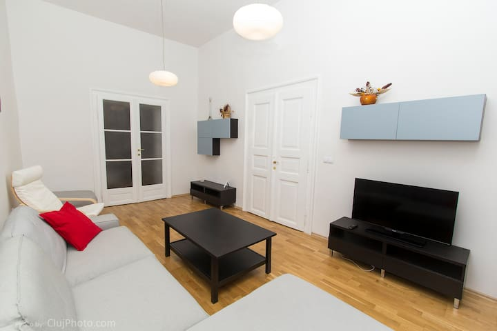 Central Gallery Apartment - Cluj-Napoca - Lägenhet