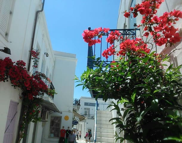 The flowers are in bloom!  To see videos of the rooms, please try you tube hotel parko channel.