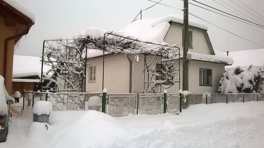 Amazing newly decorated house
