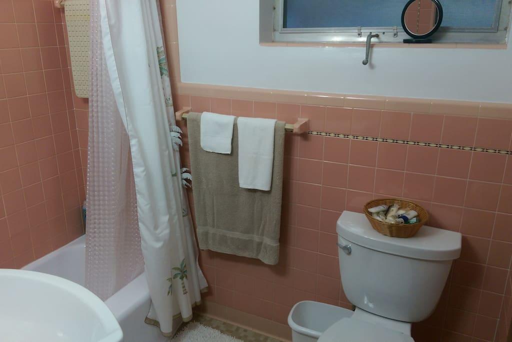 Florida apartment bathroom