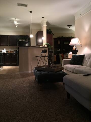 Warm and Cozy Near Castle Hills and DFW Airport