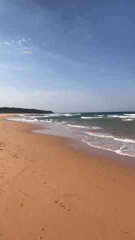 *Life is a Beach*