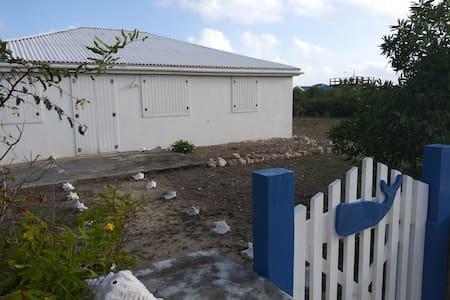 Blue Whale House