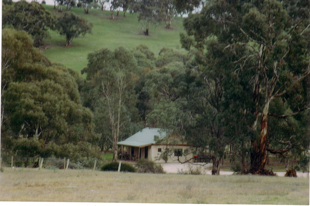 Nestled amid trees on 35ha