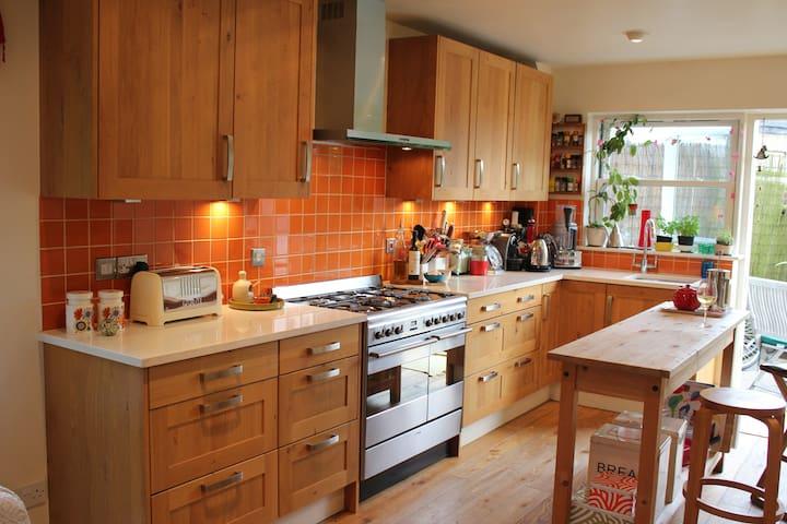 Lovely, spacious house near beautiful Oxford park - Oxford - House