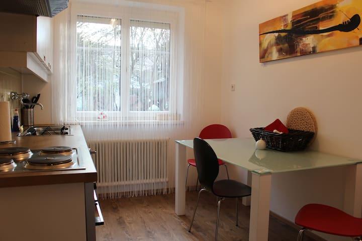 38m2 Murtal Ferienwohnung, 8km zum Red Bull Ring - Fohnsdorf - Wohnung