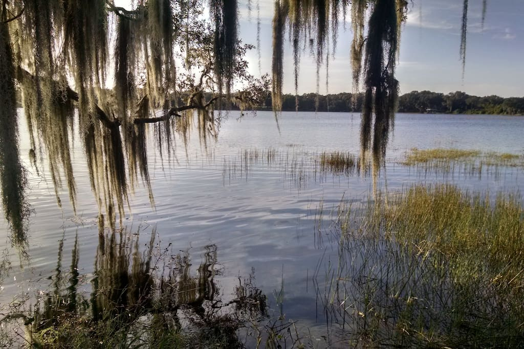 beautiful Lake Byrd