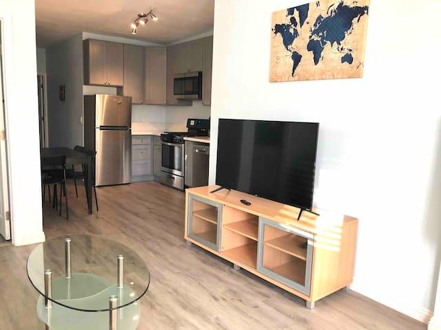 Smart TV with Roku in living room