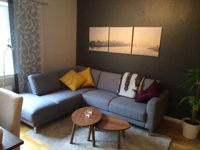 Koselig leilighet i sentralt og rolig område