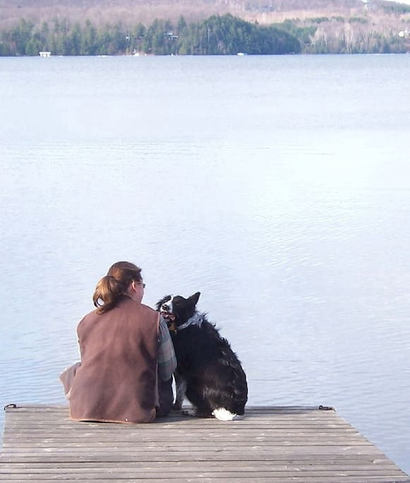 Every cabin is pet friendly for only $15/per stay.
