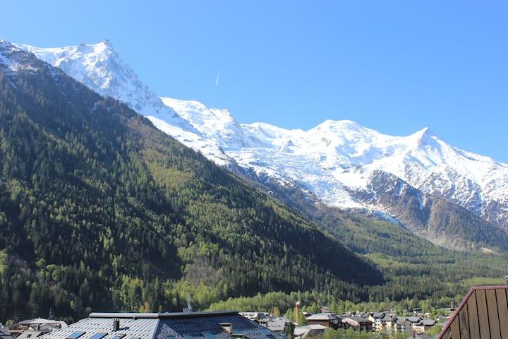 Appart cosy, 70 m2, hypercentre, face Mont-Blanc
