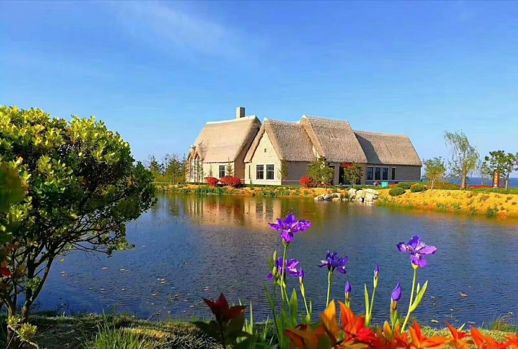 小区不远处是海滨公园,这里是威海特有的海草房,述说着胶东半岛千百年的历史。