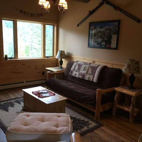 Brand New Rocky Mountain Log Garage Apartment! - Evergreen - Huoneisto