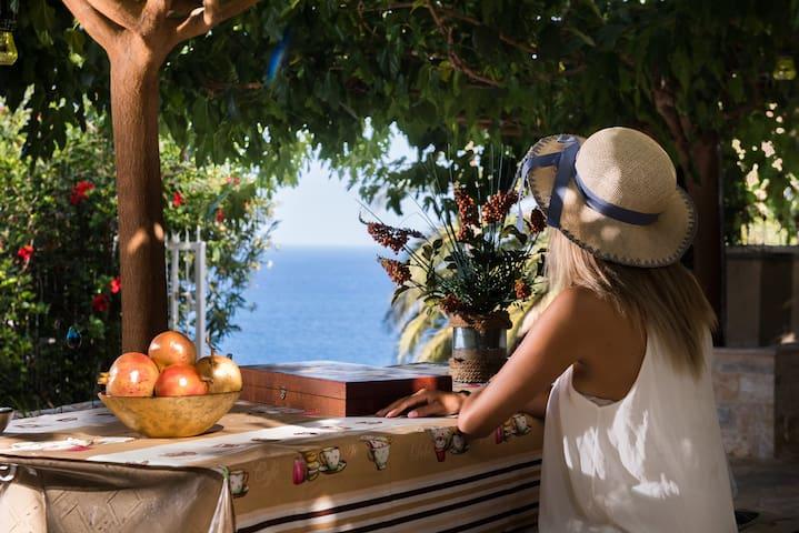 ODYSSEAS Luxury villa&SPA
