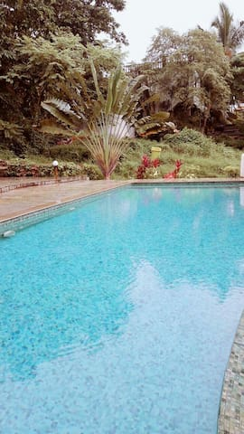 Candolim Luxury 3 Bhk Villa with Pool - Candolim - Villa