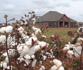 Sweet Home Fairhope Alabama Paradise Luxury - Fairhope