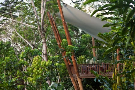 Private Studio Treehouse in the Rainforest