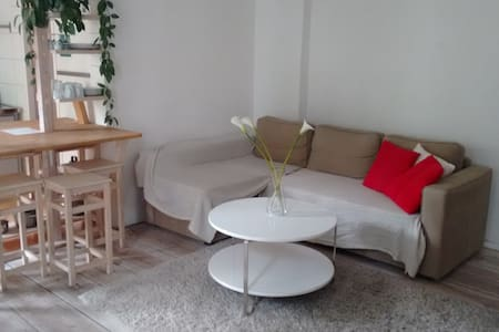 Schöne,ruhige,kleine Altbauwohnung in Berlin Mitte - Apartment