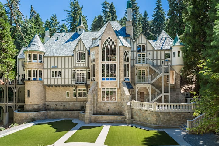 Castle in the Forest