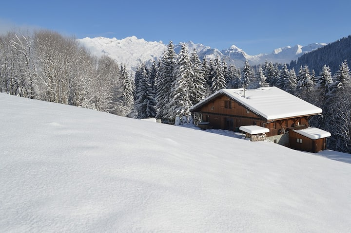 Chalet Ski Massif - Exclusive - Up to 22 people