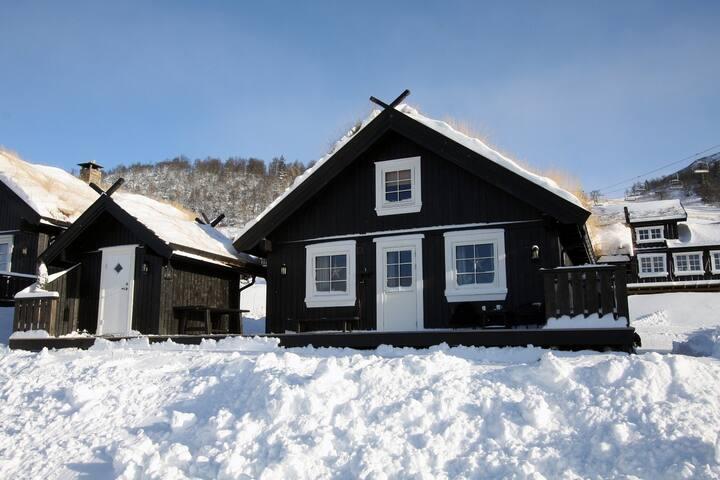 Ski in/ski out Holtardalen Rauland