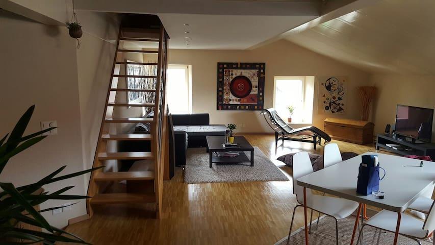 Très joli Loft moderne - Arnex-sur-Orbe - Apartment