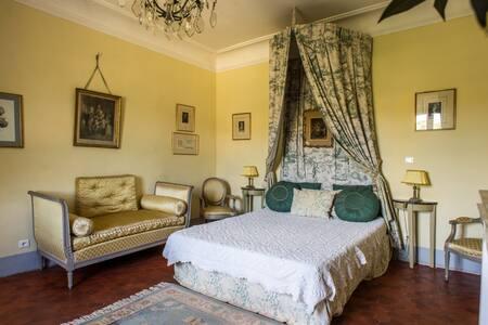 "CHAMBRE DOUBLE ""MARIE ANTOINETTE"" au château - Valensole - Bed & Breakfast"