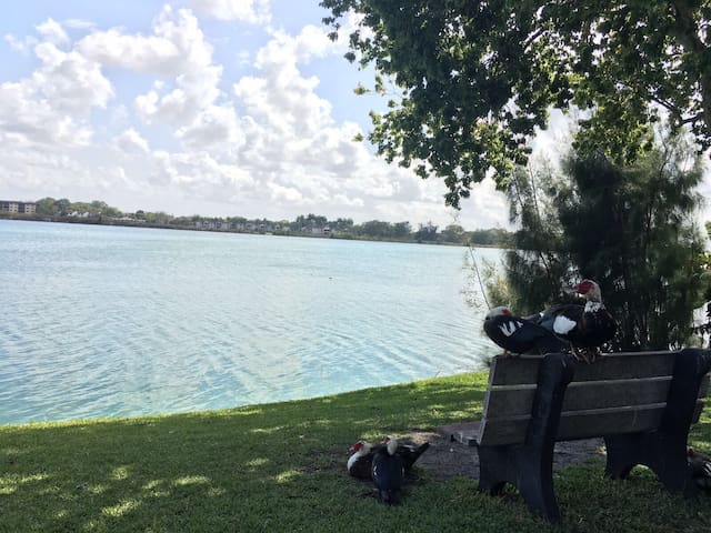Beautiful Lake Front Apt.- Aventura - Miami - Daire